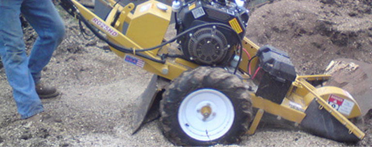 Stump Grinding Hedge Cutting